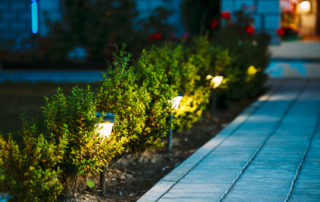 Why Your Landscape Needs Lighting Today 7