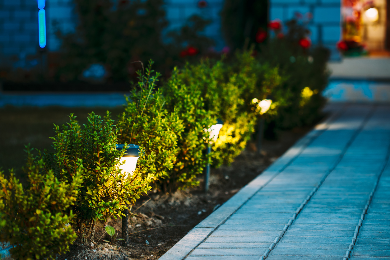 Why Your Landscape Needs Lighting Today 1