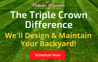 The Triple Crown Difference! 4