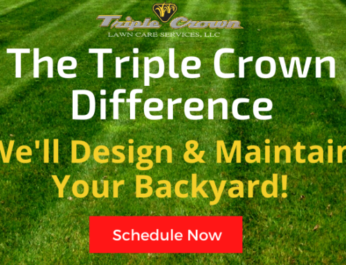 The Triple Crown Difference!
