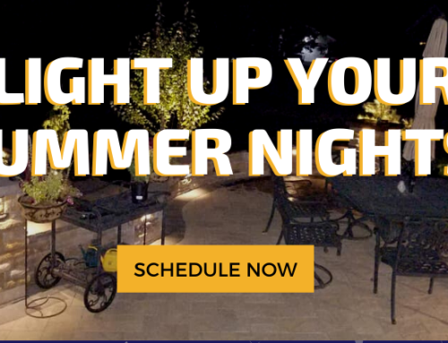 Light Up Your Summer Nights! 💡